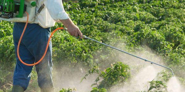 10 sintomas de intoxicação aguda com exposição a pesticidas