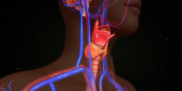 Câncer de paratireoide