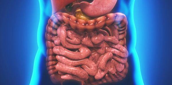Deficiência de enzimas pancreáticas - causas e sintomas