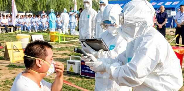 Gripe Sazonal, Suína e das Aves