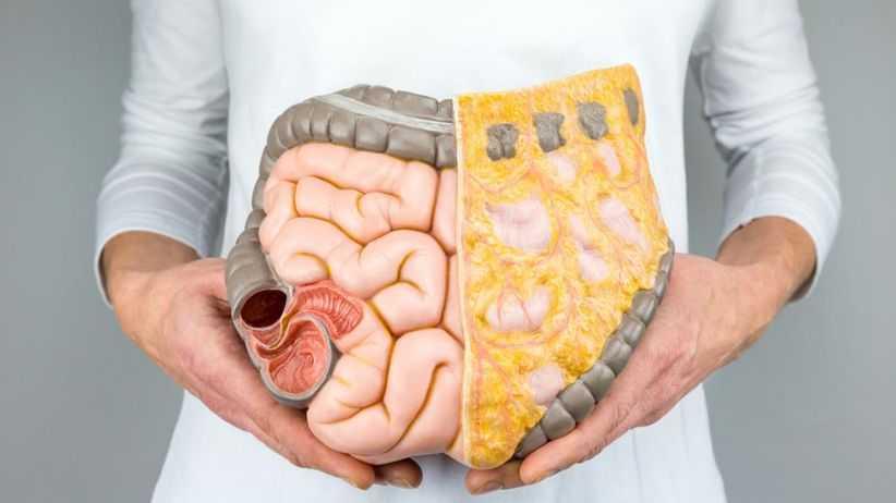 Sintomas digestivos durante e após as refeições Causas e remédios