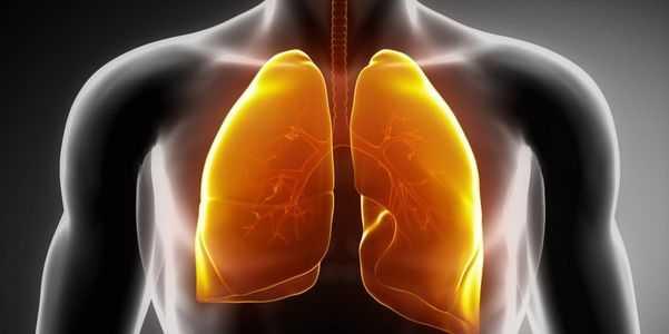o que é pulmão-doença-tipos-e-sintomas-de-pulmão-doenças.
