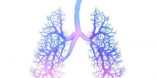 Brown pulmão doença (bissinose) causas, sintomas, tratamento