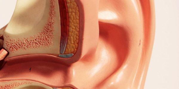 Infecção auditiva externa (Orelha do nadador) Otite externa aguda e crônica