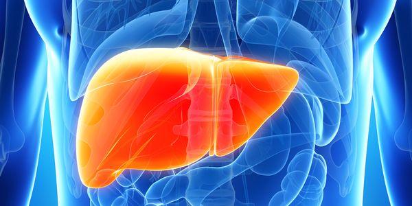 Níveis elevados de GGT, teste anormal de enzimas hepáticas, sem álcool