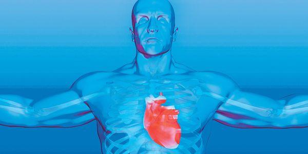 O que é doença valvular cardíaca Tipos de Doenças Cardíacas Valvulares