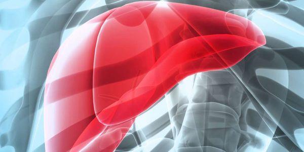 Período de incubação dos sintomas do vírus da hepatite e complicações