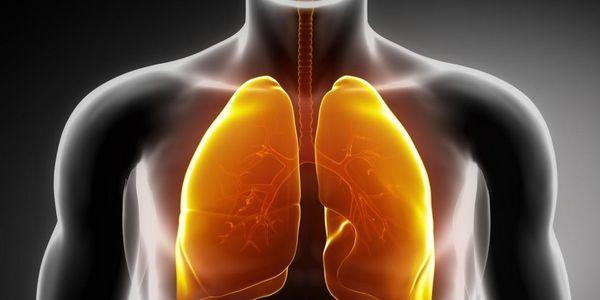 Sinais de Problemas Pulmonares (Doenças Pulmonares)