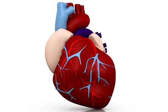 Tipos de coração fraco, causas e sintomas
