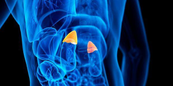 adenoma adrenal tumor da glândula adrenal benigna