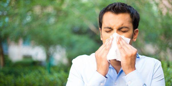 alergia ao mofo