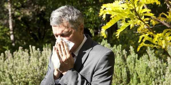 alergias ao pólen causam tratamento