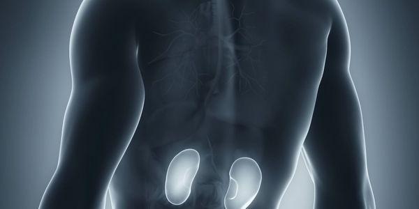analgésico nefropatia analgésico doença renal