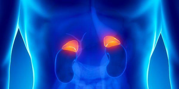 baixos níveis de cortisol hipocortisolismo insuficiência adrenal