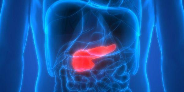 câncer de pâncreas localização tipos sintomas tratamento sobrevivência