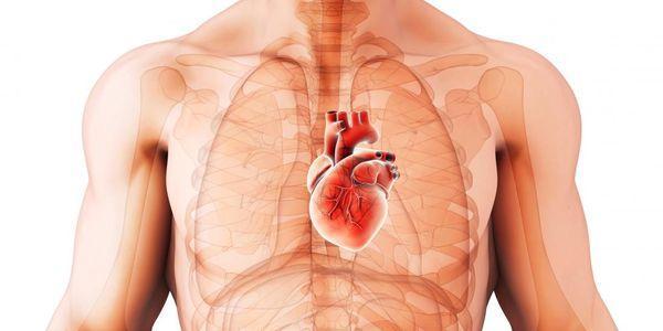 coração murmura tipos de sons cardíacos anormais causa sintomas