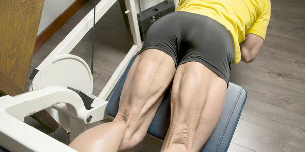 diagrama de músculos da coxa fotos lista de ações