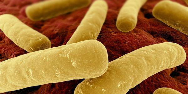 envenenamento por toxina botulínica por botulismo
