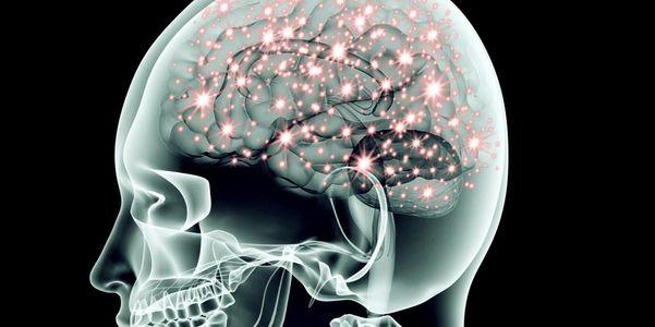 fluxo sanguíneo no cérebro cerebral e mecanismos de controle
