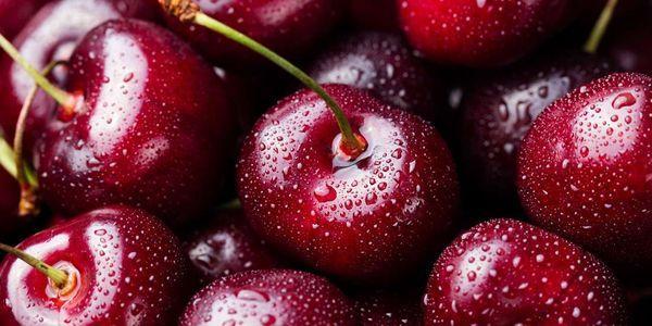 intolerância alimentar definição sintomas dieta tratamento