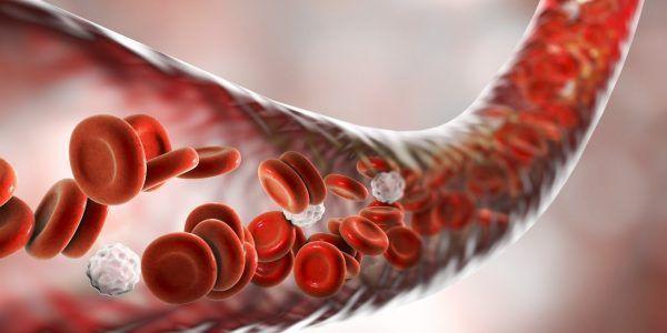 o que é a hemoglobina alta contagem de glóbulos vermelhos alta policitemia