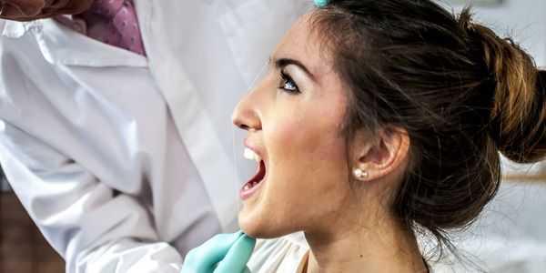 paladares palato duro anatomia do palato mole e imagem