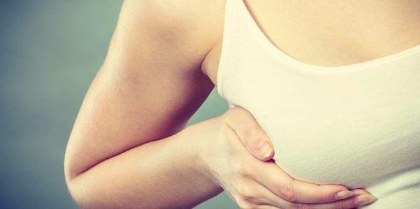 partes e imagens da função da anatomia da mama fêmea