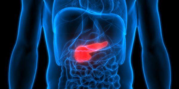 problemas de digestão má digestão sintomas comuns e causas