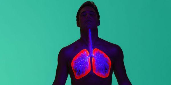 processo de respiração em humanos diagrama