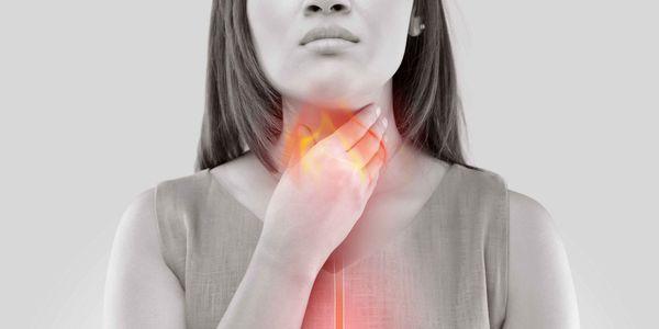 quais são os ligamentos dos músculos da cartilagem da função da laringe