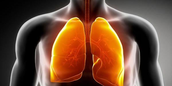 silicose do pulmão agudo acelerado e tipos crônicos