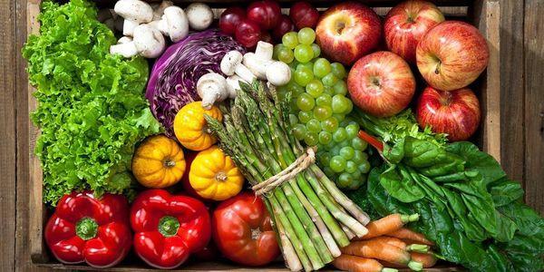 top 5 colesterol combate alimentos que você deve comer diariamente